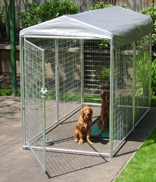 remote dog fence